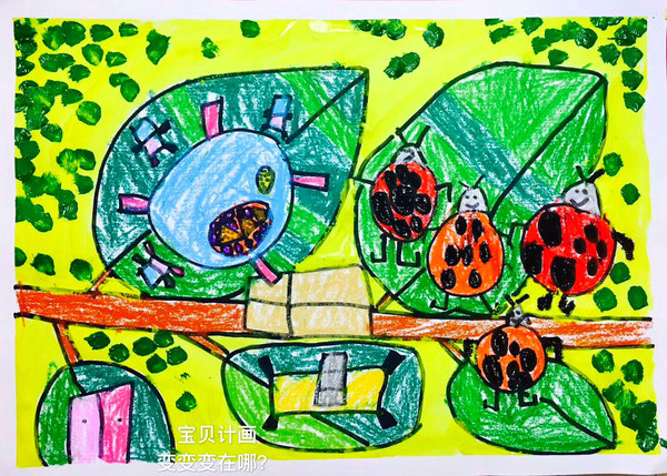 宝贝计画少儿美术绘画作品:夏天七星瓢虫吃叶子图片