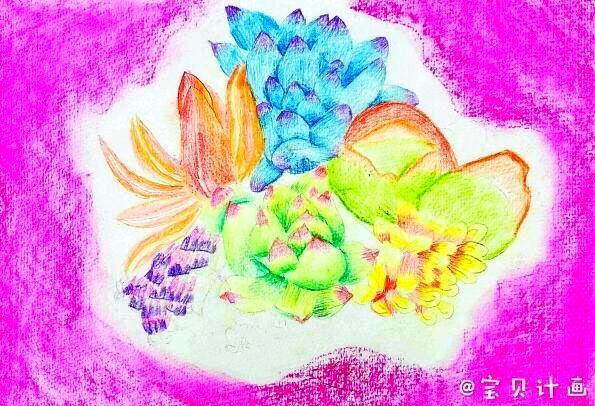 多肉荷花-少儿画画美术绘画学员作品